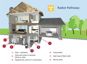 radon pathways